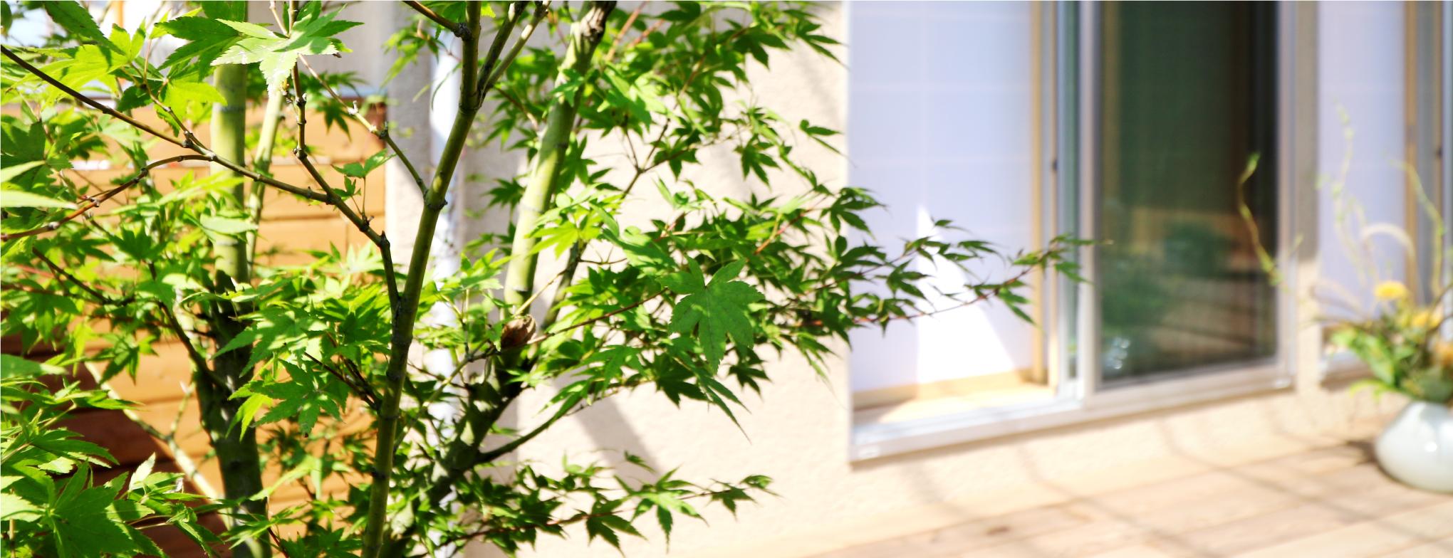 庭づくり|関元工務店|香川県高松市